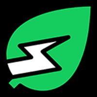 Icon Sustainability Leaf Energy Efficient